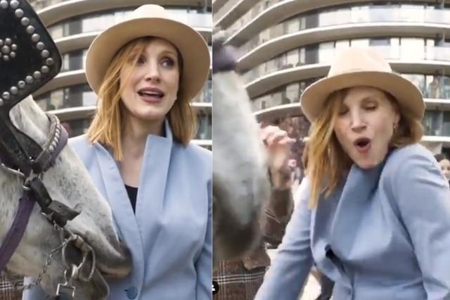 Un cheval mord les seins de l'actrice Jessica Chastain
