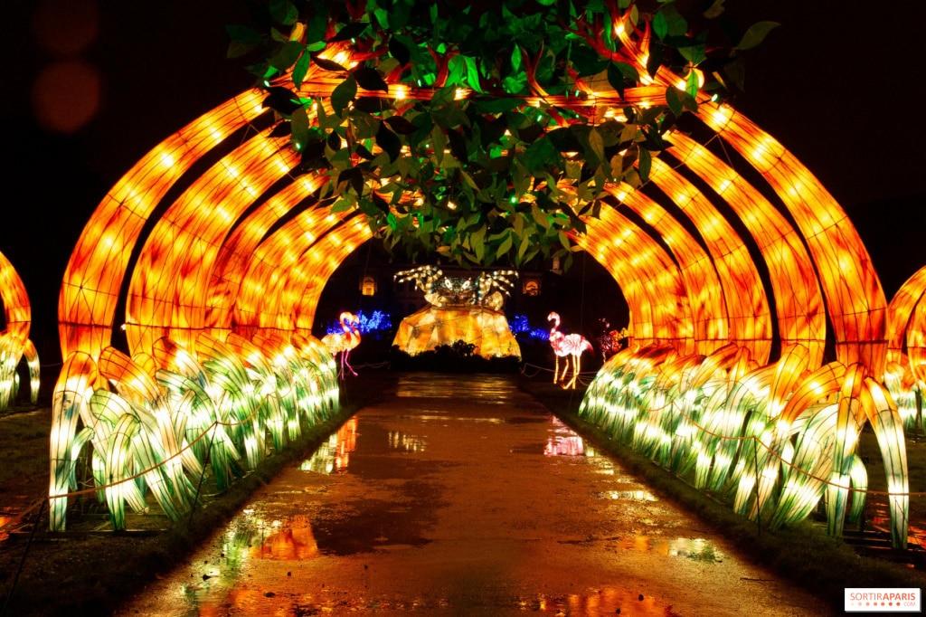 Festival des lumières du jardin des plantes